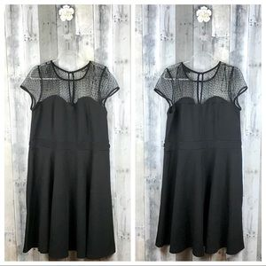 City Chic Black Illusion Lace Neck Dress Sz Large